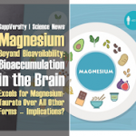 Magnesium – Beyond Bioavailability: Bioaccumulation in the Brain 1.2-Fold Higher for Mg-Taurate | No Effect on Muscle